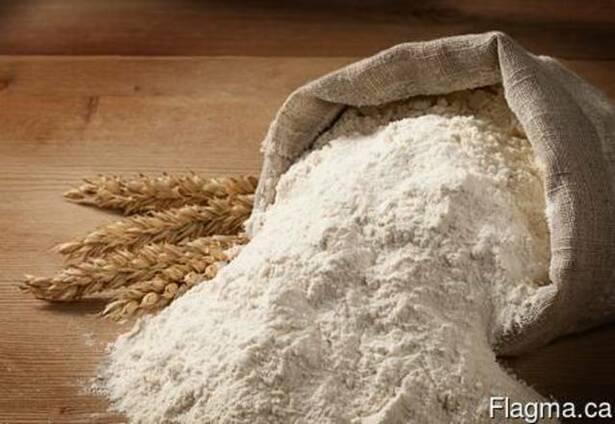 Продам мука пшеничная 1с (первый сорт) Украина экспорт