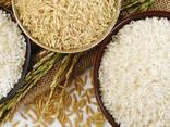 Рис - Rice - photo 1