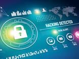 Website security - photo 3